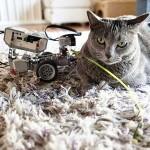 猫と触る教育版レゴ マインドストームEV3〜LEGOでロボットやプログラミングが学べる!?