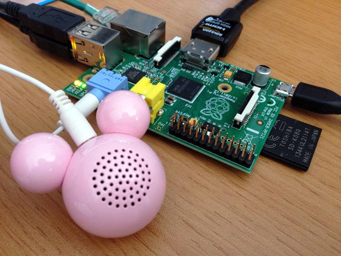 raspberry12_main