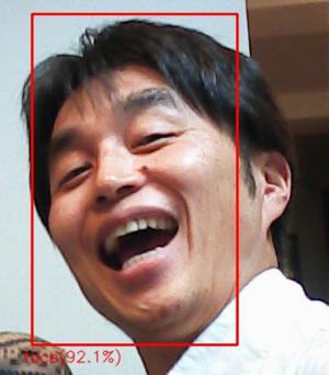 写真の中の顔を抽出した部分を枠で囲み、検出率を入れる事ができる