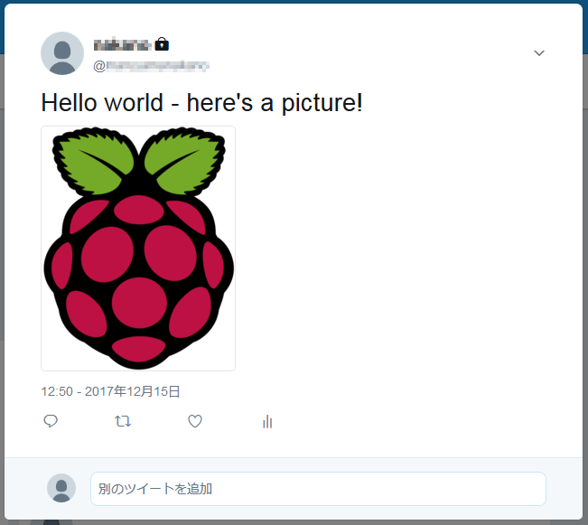 raspberrypi67_img04